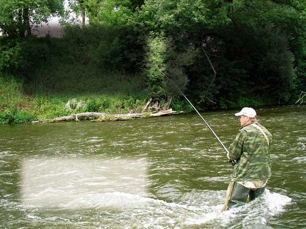 ловля подуста на пруту