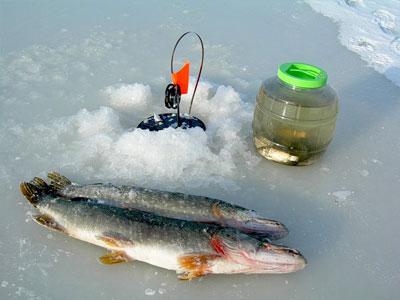 Зимняя ловля жерлицами
